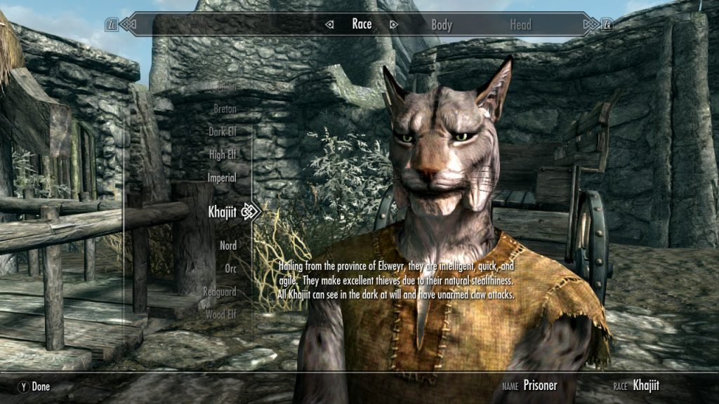 We seriously considered being Khajiit, but we didn't want to be stuck looking like a cat forever.