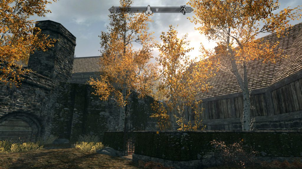 Just imagine the sounds that Skyrim pairs with this sunny view.