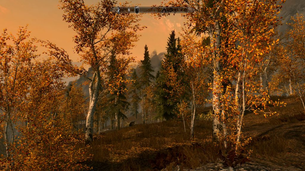 Get lost in the breathtaking province of Skyrim.